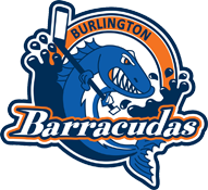 Logo for Burlington Girls Hockey Club