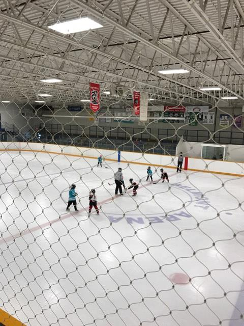 Novice_HL2_-_Blue_Dolphins_-_Aylmer_Tournament_2.jpg